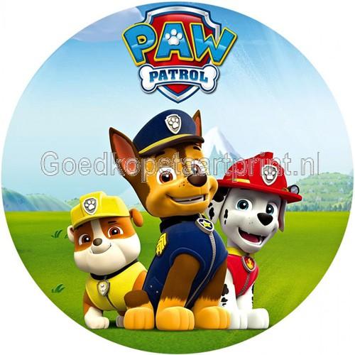paw patrol 5