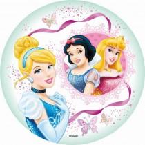 Disney prinsessen rond 03