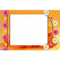 Eigen ontwerp met frame 13