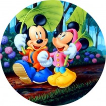 Mickey mouse 5