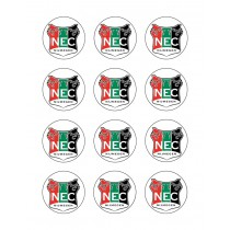 N.E.C Nijmegen cupcake 1